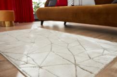 Le tapis design 100 x 150 cm 44,99€