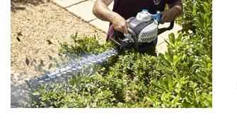 Mettre votre jardin au carré