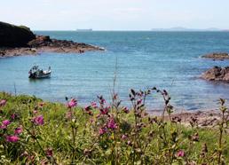 © Sentiers côtiers du Pembrokeshire