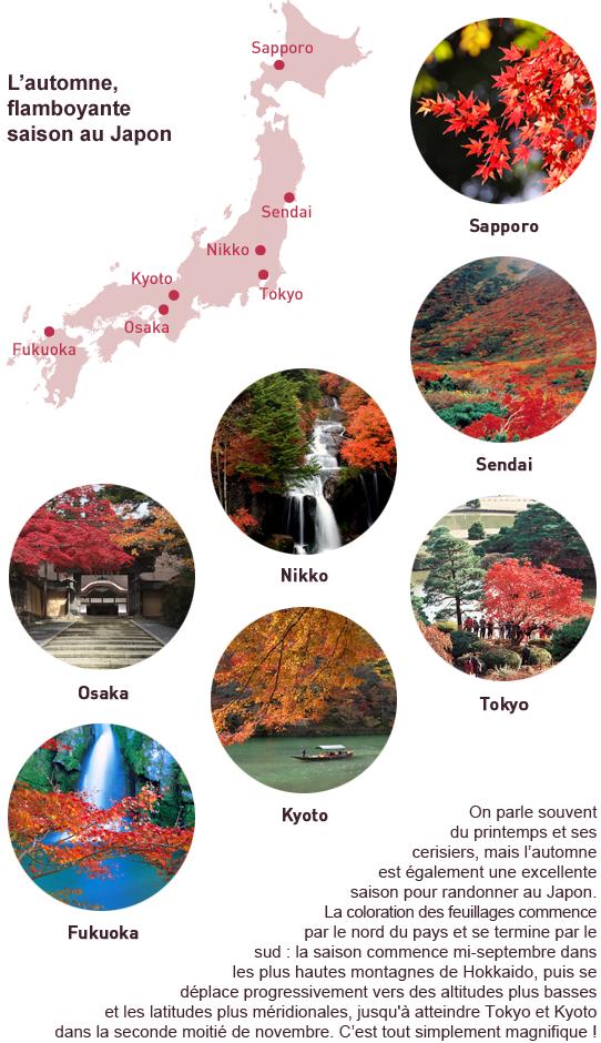On parle souvent du printemps et ses cerisiers, mais l'automne est également une excellente saison pour randonner au Japon © Stefane Buvot