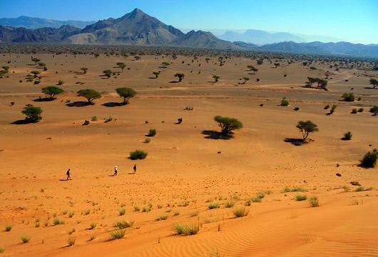 Désert, oasis et wadis d'Oman © E. Najman