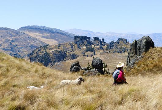 Sur les traces des civilisations pré-incas