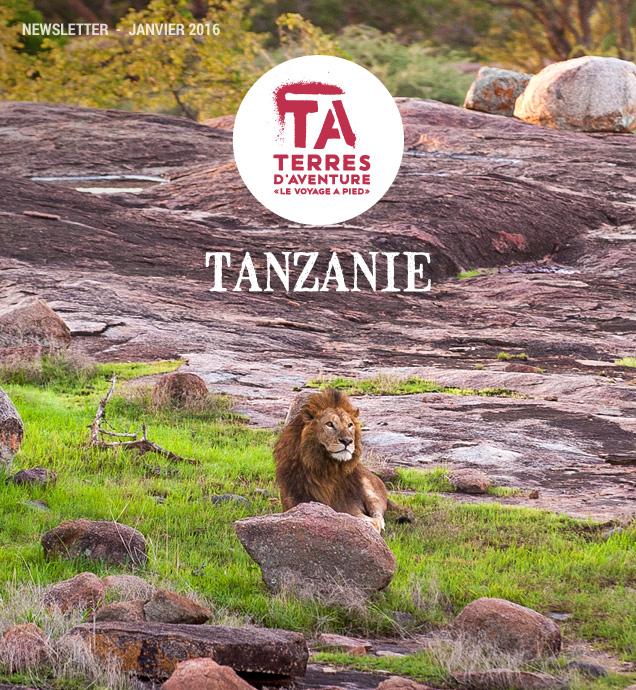 Tanzanie © Mwiba Lodge