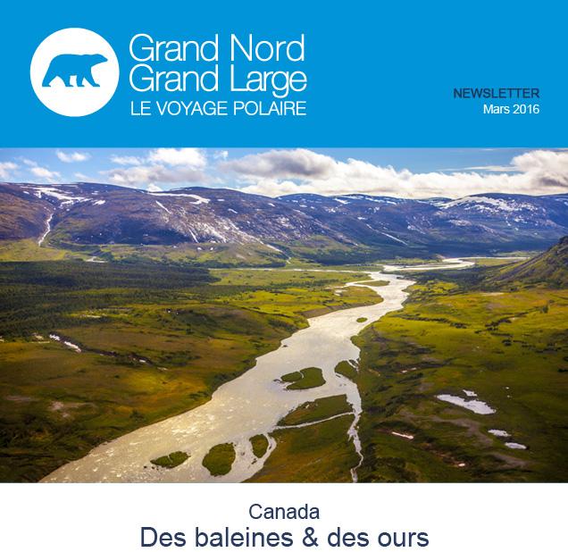 Canada, des baleines et des ours © OT Québec