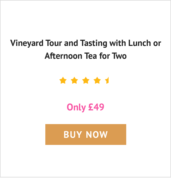 Vineyard Tour and Tasting with Lunch or Afternoon Tea for Two - Only £49