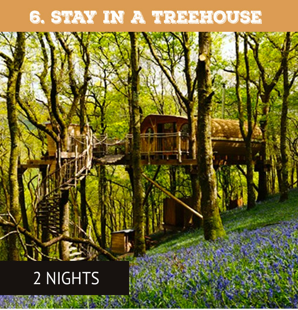 Two Night Tree House Escape for Two - Only £379