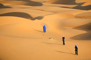 Les oasis de l'Adrar