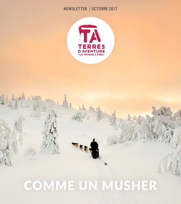 Comme un musher © Yoan Fontan - Finlande