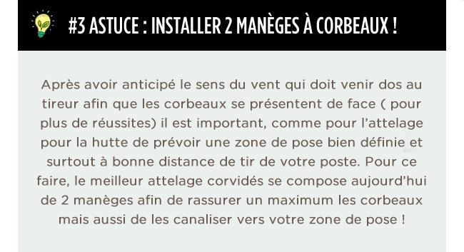 #3 ASTUCE : INSTALLER 2 MANÈGES À CORBEAUX !