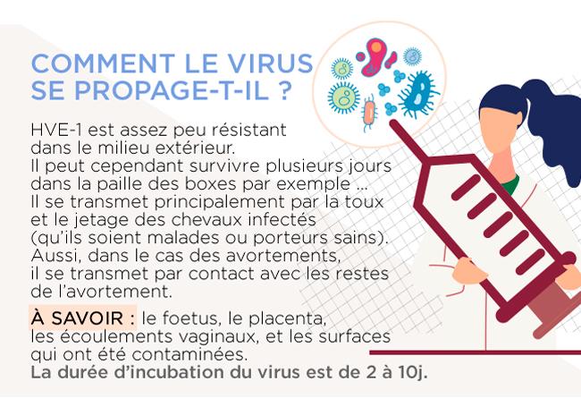 Comment le virus se propage-t-il ?