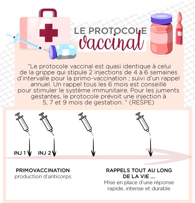Le protocole vaccinal